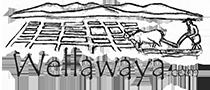 Destination Guide to Wellawaya